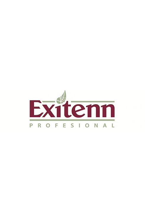 EXITENN